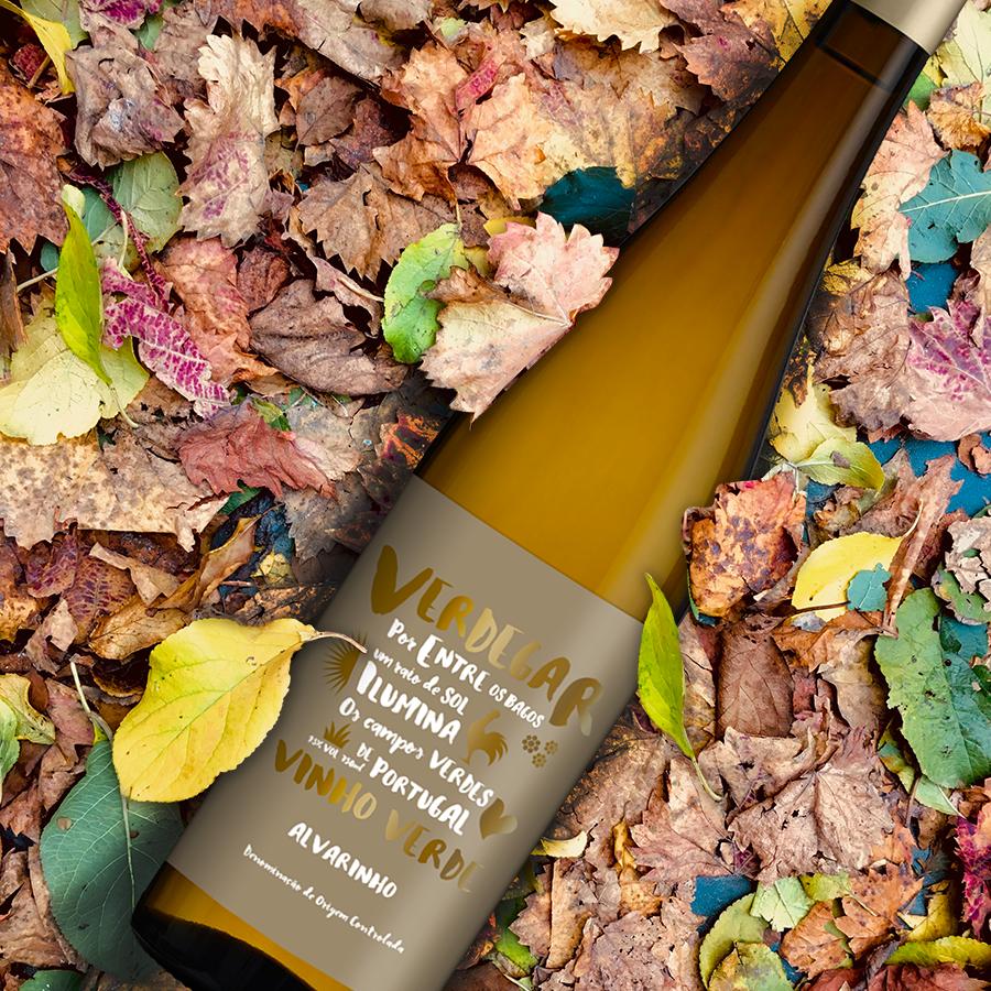 Criação de rótulo de vinho verde Verdegar